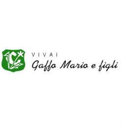 Vivai Gaffo Mario & Figli - Vivai piante e fiori Montebelluna