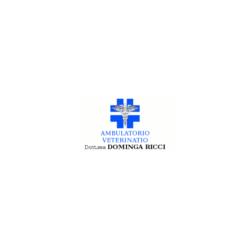Ambulatorio Veterinario Dott.ssa Ricci Dominga - Veterinaria - ambulatori e laboratori Andria