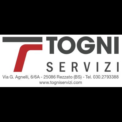 Tognibus