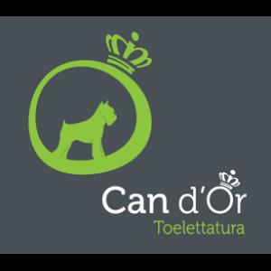 Toelettatura Can D'Or - animali domestici - servizi Teramo