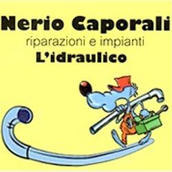 Ditta Termoidraulica Nerio Caporali - Energia solare ed energie alternative - impianti e componenti Cesena
