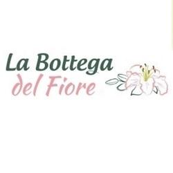 La Bottega del Fiore - Fiori e piante - vendita al dettaglio Cortemilia