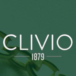 Gioielleria Clivio 1879