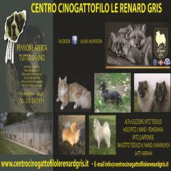 Centro Cinogattofilo Le Renard Gris - Animali domestici - vendita Greggio