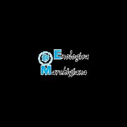 Enologica Marchigiana - Enologia macchine e prodotti - produzione e ingrosso Cupramontana
