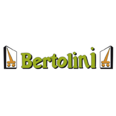Bertolini Autogru - Autogru - noleggio Reggio nell'Emilia