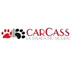 Carcass - Comune e servizi comunali Grottaglie
