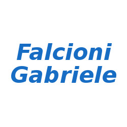 Falcioni Gabriele