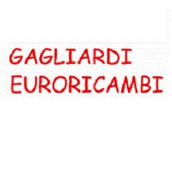 Euroricambi Gagliardi - Autoaccessori - commercio Manfredonia