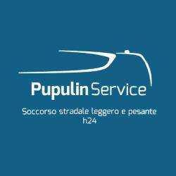 Pupulin Service