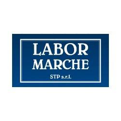 Labor Marche Stp S.r.l - Ricerca e selezione del personale Ancona