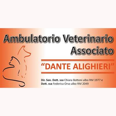 Ambulatorio Veterinario Associato Dante Alighieri - Veterinaria - ambulatori e laboratori Pomezia