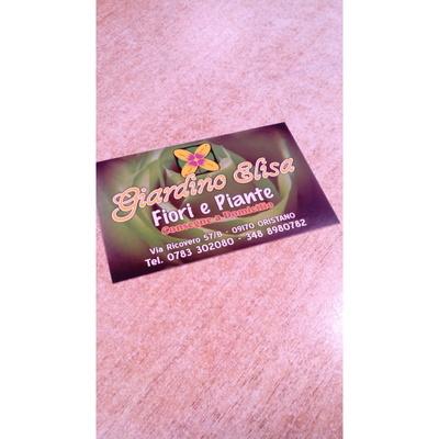 Fiori e Piante Elisa - Fiori e piante - vendita al dettaglio Oristano