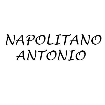 Napolitano Antonio - Autofficine e centri assistenza Pago del Vallo di Lauro