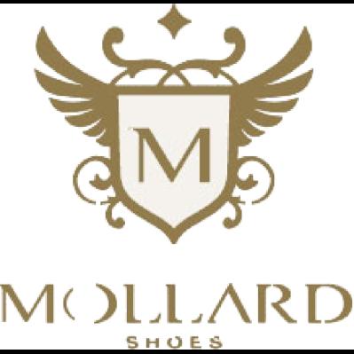 Mollard Shoes - Calzature - vendita al dettaglio Mantova