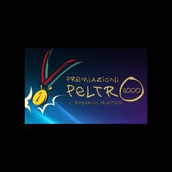 Premiazioni Peltro 2000 - Coppe, trofei, medaglie e distintivi - vendita al dettaglio Guidizzolo