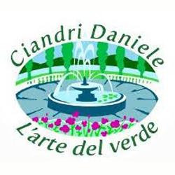 Ciandri Daniele Giardinaggio - Giardinaggio - servizio Titignano