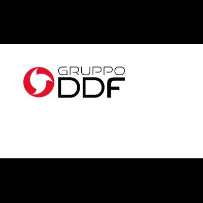 Gruppo Ddf