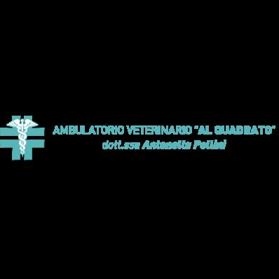 Ambulatorio  Veterinario al Quadrato Valeggio - Veterinaria - ambulatori e laboratori Valeggio sul Mincio