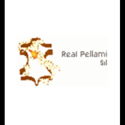 Real Pellami - Pelli e pellami - produzione e commercio Fucecchio