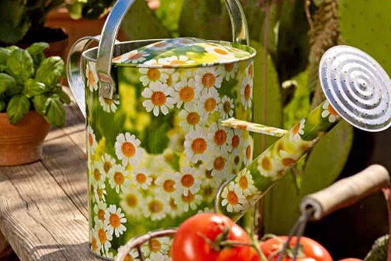 Bello Arte Giardino Reana Immagine Di Giardino Arredamento