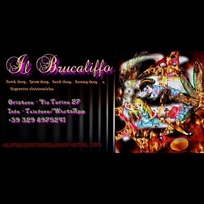 Il Brucaliffo di Marisa - Sementi e bulbi Oristano
