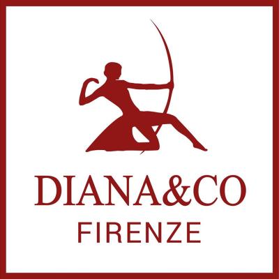 Diana&Co Firenze - David Jones Paris - Pelletterie - vendita al dettaglio Osmannoro