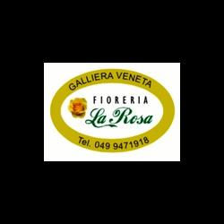 Fioreria La Rosa - Fiori e piante - vendita al dettaglio Galliera Veneta