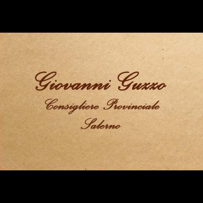 Giovanni Guzzo - Partiti e movimenti politici Novi Velia