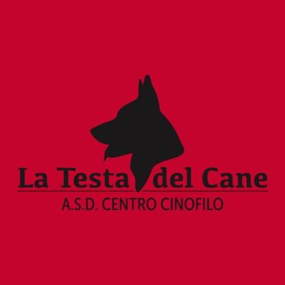 Centro Cinofilo La Testa del Cane - Animali domestici - allevamento e addestramento Cesinali