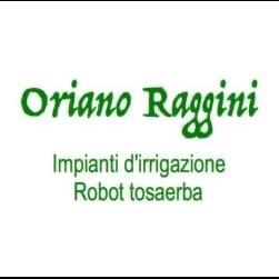 Raggini Irrigazioni e Robot Tosaerba - Irrigazione - impianti Cesena
