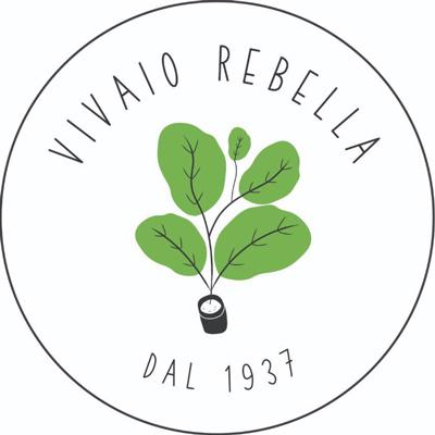 Vivaio Rebella - Fiori e piante - vendita al dettaglio Quiliano