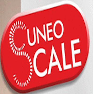 Cuneo Scale