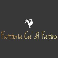 Fattoria Ca' di Fatino - Agriturismo Castiglione dei Pepoli