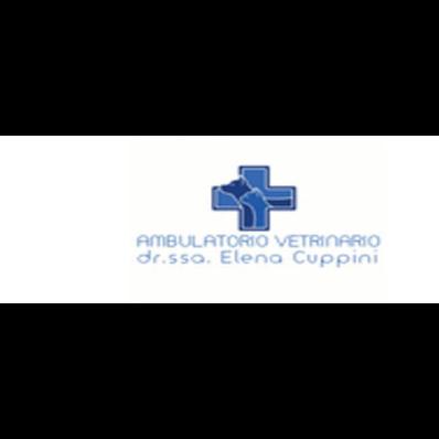 Ambulatorio Veterinario Cuppini Dott.ssa Elena - Veterinaria - ambulatori e laboratori Anzola dell'Emilia