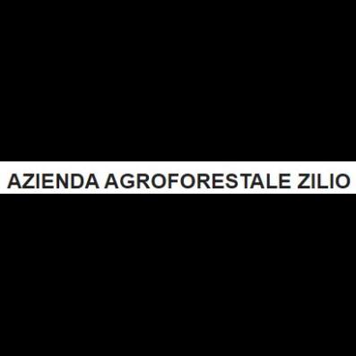 Azienda Agroforestale Zilio