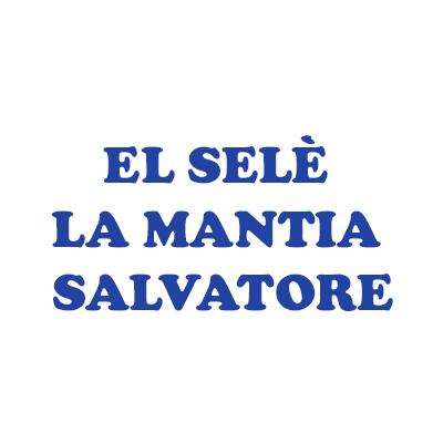 El Selè La Mantia Salvatore - Ricambi e componenti auto - commercio Mandello del Lario