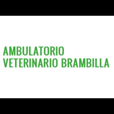 Ambulatorio Veterinario Brambilla - Veterinaria - ambulatori e laboratori Cusano Milanino