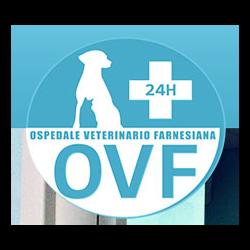 Ospedale Veterinario Farnesiana - Pronto soccorso Piacenza