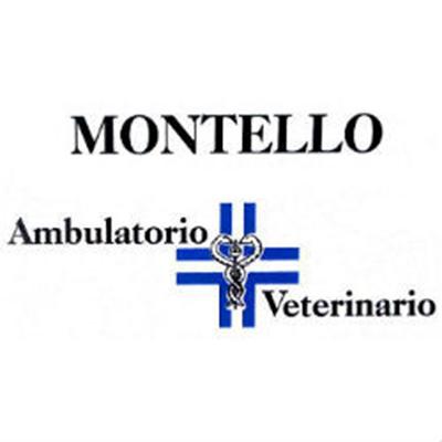 Ambulatorio Veterinario Montello - Veterinaria - ambulatori e laboratori Montebelluna