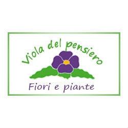 Fioreria Viola del Pensiero - Vivai piante e fiori Mogliano Veneto