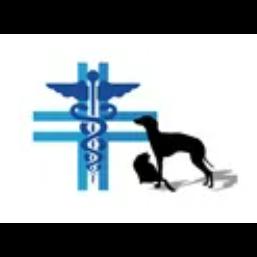 Clinica Veterinari San Tommaso - Veterinaria - ambulatori e laboratori Ortona