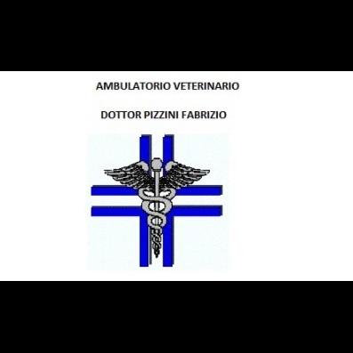 Ambulatorio Veterinario Pizzini Fabrizio - Veterinaria - ambulatori e laboratori Volano