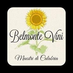 Belmonte Vini - Commercio elettronico - societa' Mongrassano