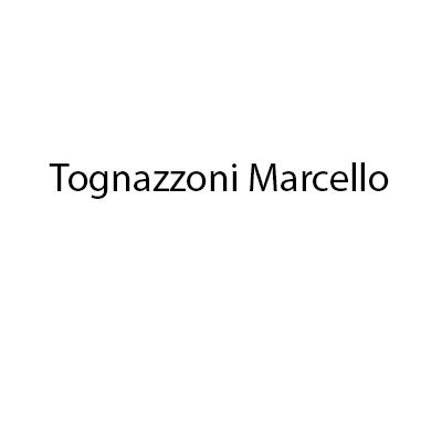 Tognazzoni Marcello - Agenti e rappresentanti di commercio Montecatini Terme