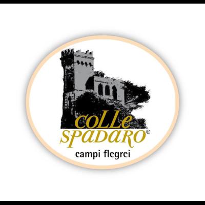 Colle Spadaro di Vivenzio Antonio - Aziende agricole Napoli