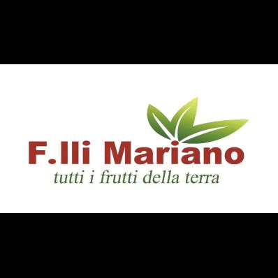 Fratelli Mariano 2000 - Frutta e verdura - ingrosso Arzachena