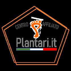 Ortopedia Athena – Centro Plantari.It - Ortopedia - articoli Torino