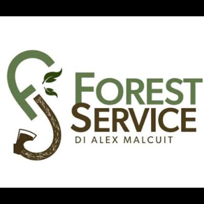 Forest Service - Riscaldamento - combustibili Saint-Vincent