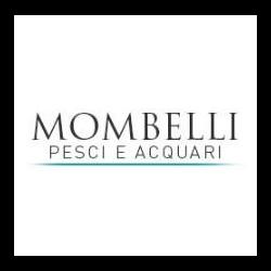 Acquari Mombelli